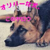 『オリバーな犬、(Gosh!!)このヤロウ』2話ネタバレと感想│押忍!に訳がついてわかりやすく!ツイてない男・溝口さんが面白い!